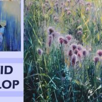 Natural Wonders with David Dunlop